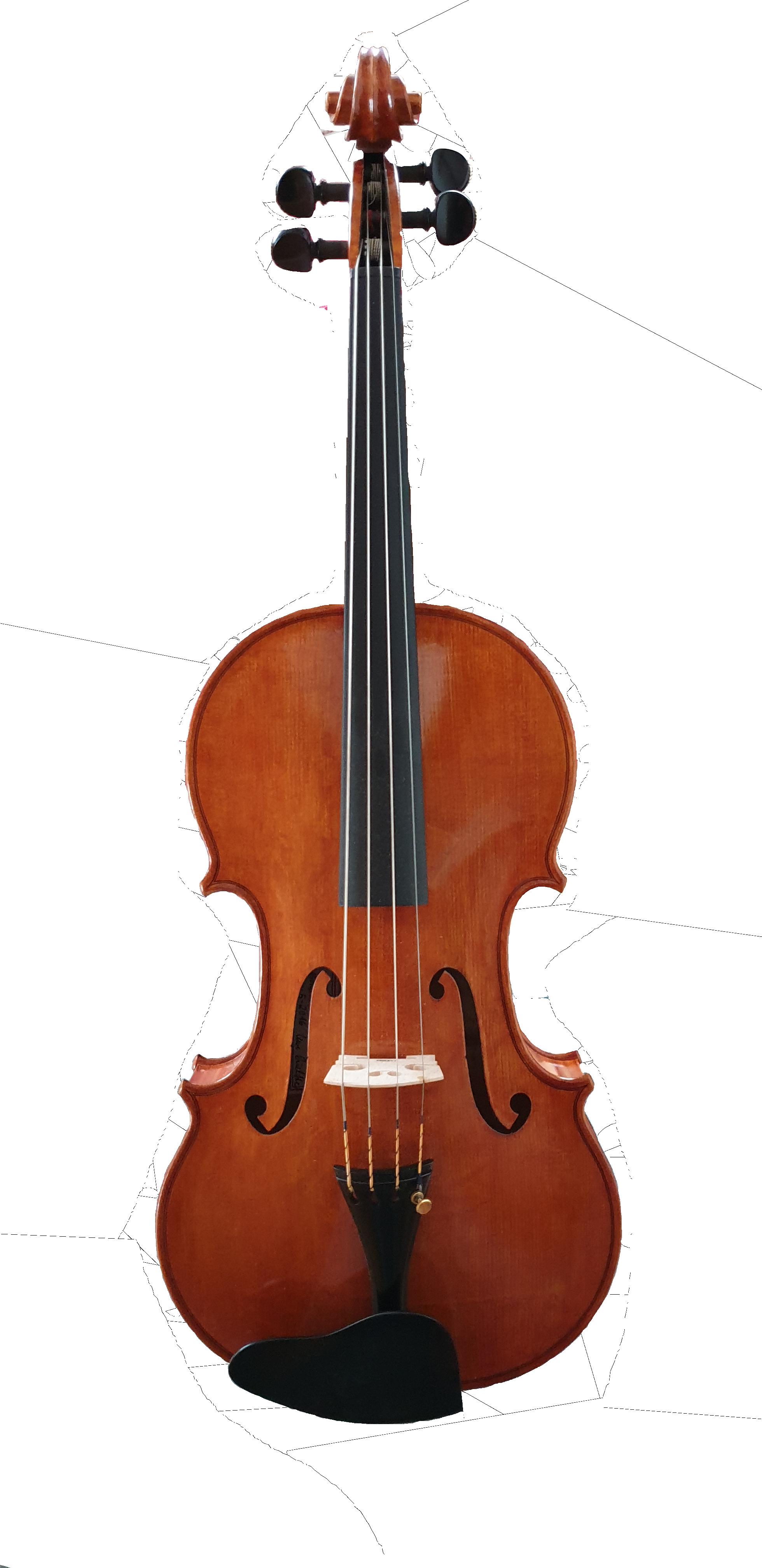Bratsche (Viola)